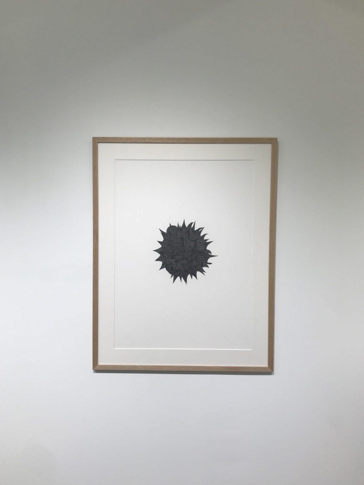 Jérémy Louvencourt, Série étude des pollens #2, Ink on paper, 2020.